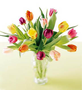 - FTD� Carnival Tulips Bouquet