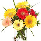 FTD® Happiness Bouquet