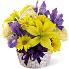 FTD� Spirit of Spring Bouquet