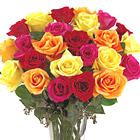 FTD� Bright Spark Roses Premium