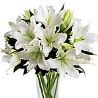 FTD® Light In Your Honor Lilies Bouquet