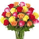 FTD® Bright Spark Roses Premium