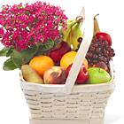 FTD� Garden Paradise Fruit Basket
