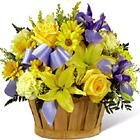FTD� Little Boy Blue Bouquet Deluxe