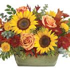 Teleflora® Sunflower Farm Centerpiece