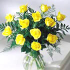 FTD® Brighten The Day Rose Bouquet