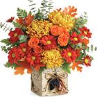 Teleflora® Wild Autumn Bouquet