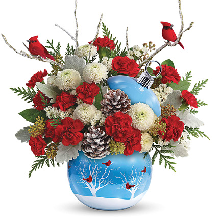 - Teleflora� Cardinals in the Snow