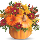 Teleflora� Country Pumpkin Bouquet