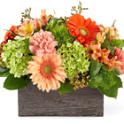 FTD® Hello Gorgeous Bouquet Dlx
