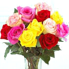 FTD® Mixed Colors Roses Bouquet
