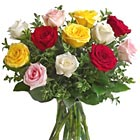International - Mixed Color Roses