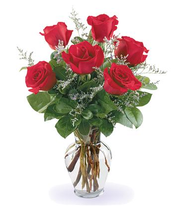 1-800-FLORALS coupon: Fancy Half Dozen Roses Vase