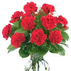 Dozen Red Carnations Vase
