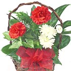 Valentine Planter Basket