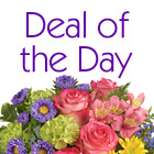 Deal of the Day Spring Mix Bouquet