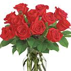 Enduring Passion Dozen Roses