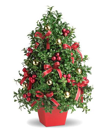 Deck The Halls Bouquet