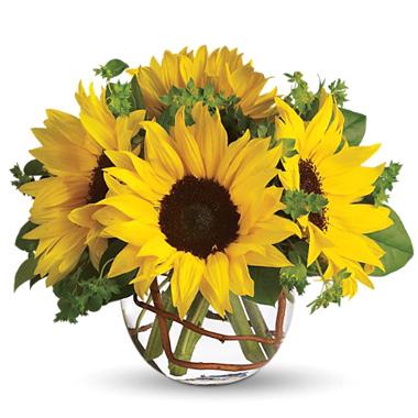 Sunny_Sunflowers_Bouquet