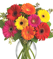 Gervera Brights Bouquet