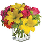 Teleflora� Sunsplash Bouquet
