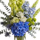 Teleflora� On Cloud Nine Bouquet