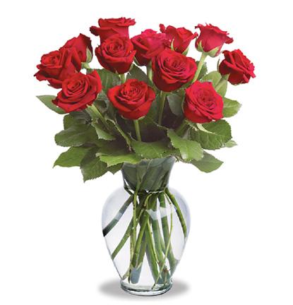 12_Roses_Vased