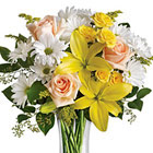 Teleflora® Daisies and Sunbeams Vase