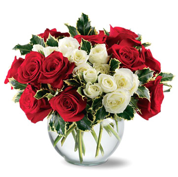 Holiday Enchantment Roses