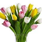 Spring Tulips Vase