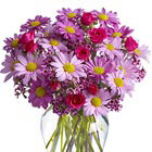 Delightfully Daisies Bouquet