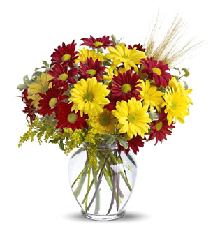 Fall Daisies Bouquet