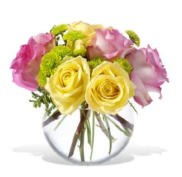 1-800-FLORALS coupon: Pink Lemonade Roses