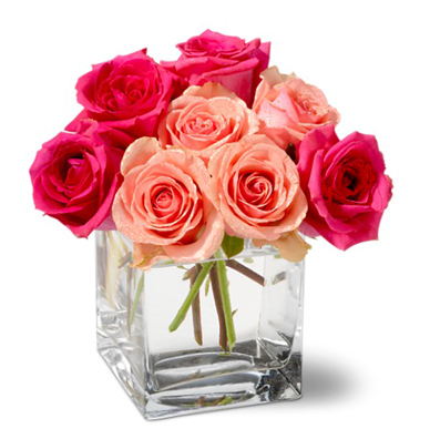 1-800-FLORALS coupon: Shades of Pink Roses
