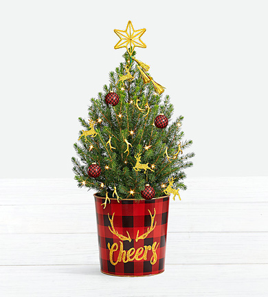 - Holiday Glam Spruce Tree