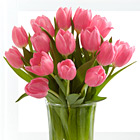 Pink Prelude Tulip Bouquet with Vase