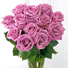 One Dozen Lavender Roses with Vase