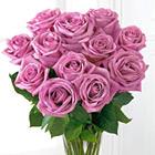One Dozen Lavender Roses with Vase