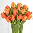 Autumn Fire Tulip Bouquet