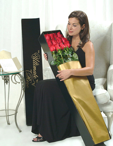 One Dozen Red 3 Ft. Ultimate Roses