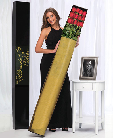 One Dozen Red 5 Ft. Ultimate Roses