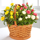 Better Homes & Gardens Rose Garden Basket