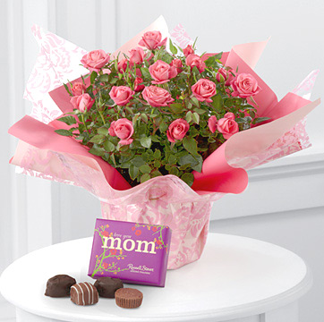 - Sweet Memories Mini Rose with Chocolates