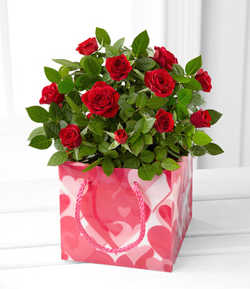 - Truly Yours Valentines Day Mini Rose Plant