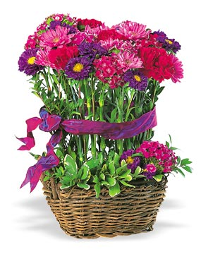 Topiary Basket Virtual Bouquet