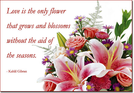 Flower Love Quotes Amusing Free 'love Is The Flower' Virtual Flowers And Quote800Florals