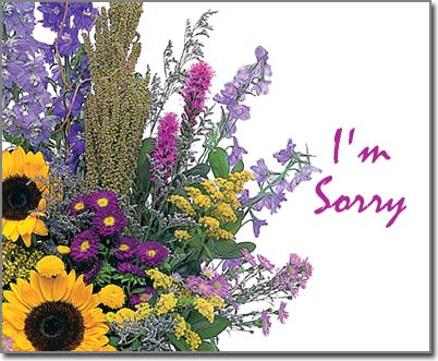 'I'm Sorry' Virtual ecard